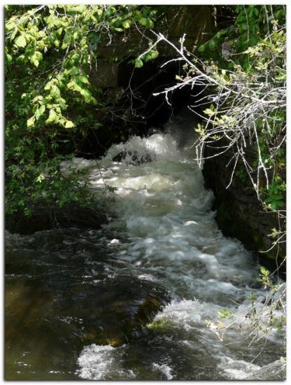 rivière a1