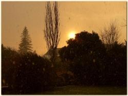 Jardin-neige-d2.jpg