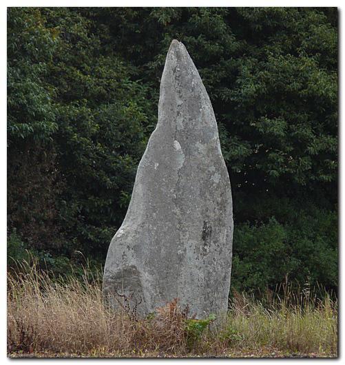 Menhir-de-Laniscar-m2.jpg