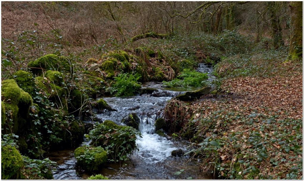 Ruisseau st cado sc2
