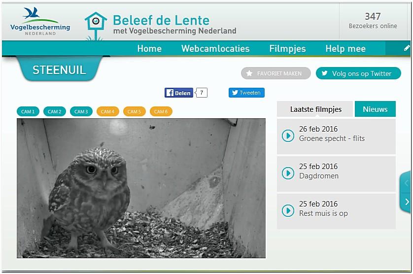 Site nederland live cheveche a1